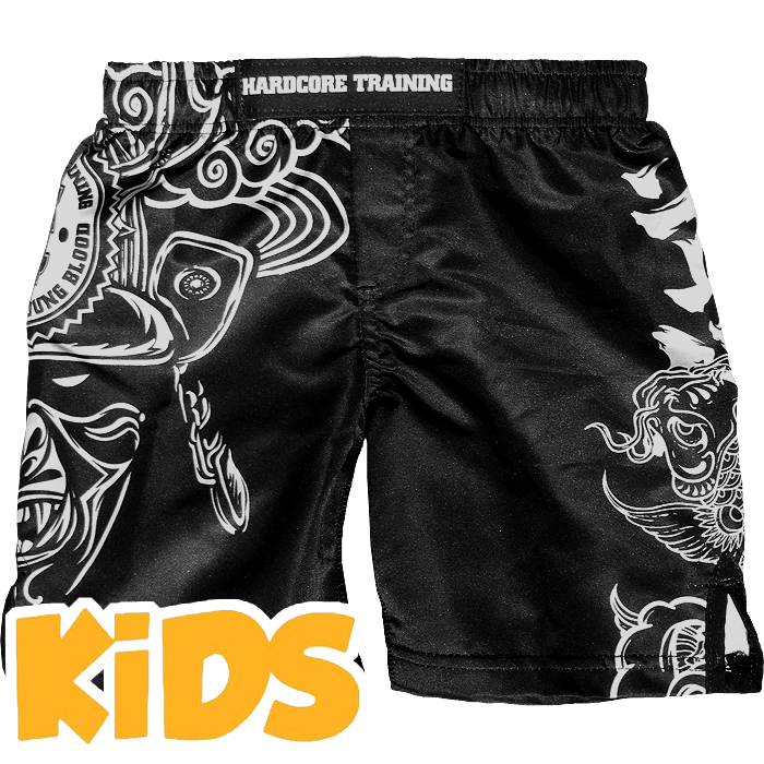 Купить Бойцовские шорты ММА, Шорты Hardcore Training, Training