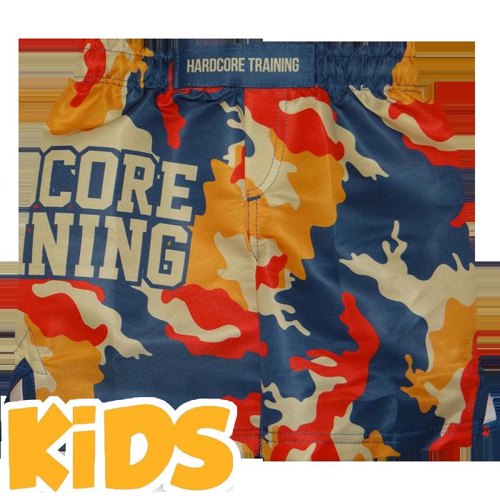 Бойцовские шорты ММА, Шорты Hardcore Training, Training  - купить